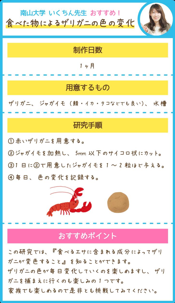 食べた物によるザリガニの色の変化
