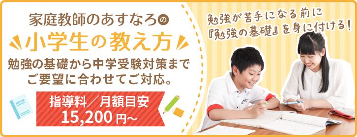 勉強の基礎から中学受験対策までご要望に合わせてご対応